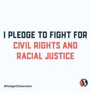 I Pledge to Fight