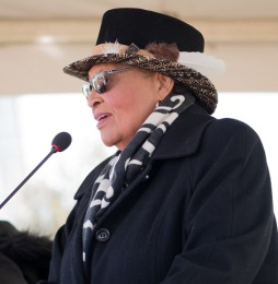 Alma Adams cropped